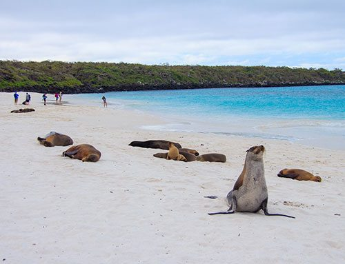 How Many Days in the Galapagos